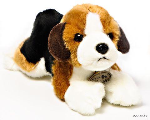 "Мягкая игрушка ""Бигль"" (25 см) — фото, картинка"