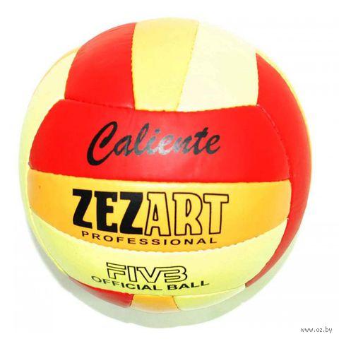 Мяч волейбольный (арт. 0072) — фото, картинка