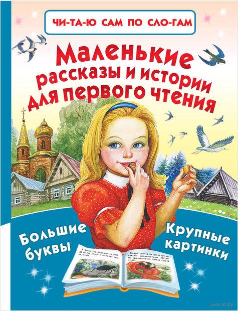 Маленькие рассказы и истории для первого чтения — фото, картинка