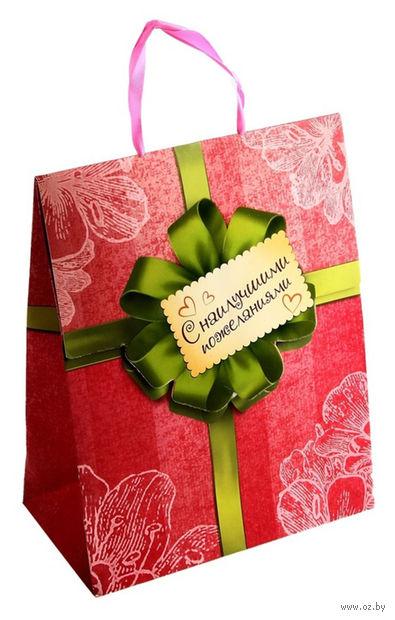 """Пакет бумажный подарочный """"С наилучшими пожеланиями"""" (26х32х10 см; арт. 10367447)"""