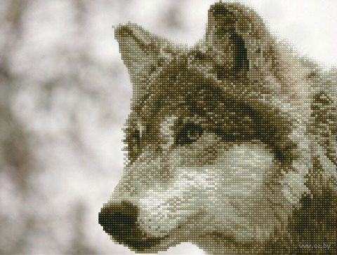 "Алмазная вышивка-мозаика ""Волк"" (420х320 мм) — фото, картинка"