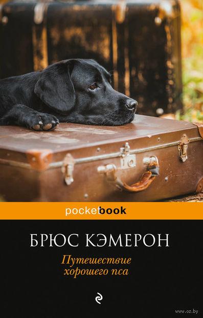 Путешествие хорошего пса (м) — фото, картинка