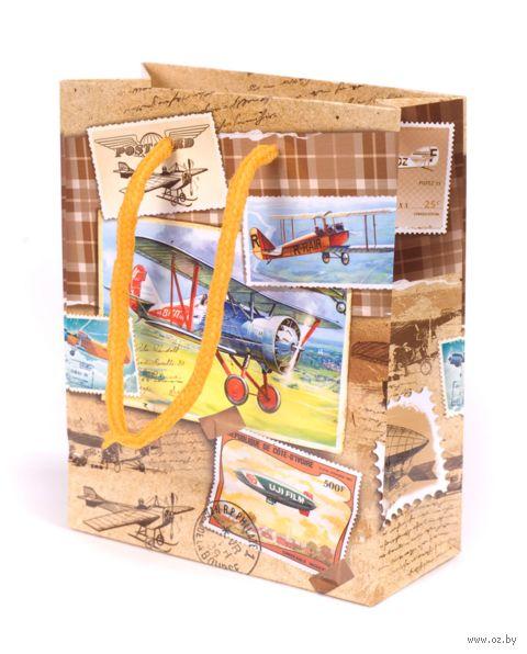 """Пакет бумажный подарочный """"Самолеты"""" (11х14х5 см; арт. 10733086)"""