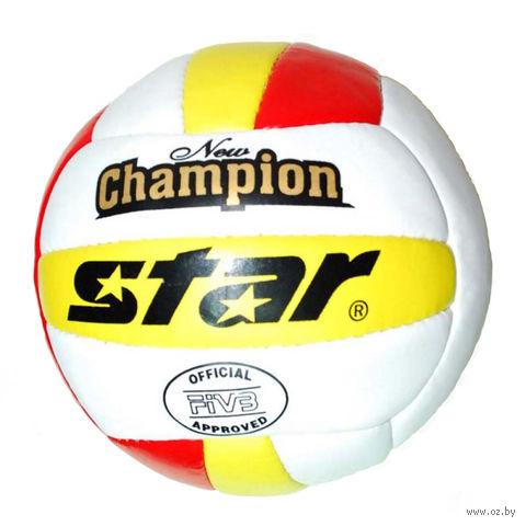 Мяч волейбольный (арт. VOL-S) — фото, картинка