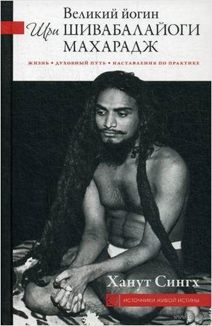 Великий йогин Шри Шивабалайоги Махарадж. Жизнь, духовный путь, наставления по практике — фото, картинка