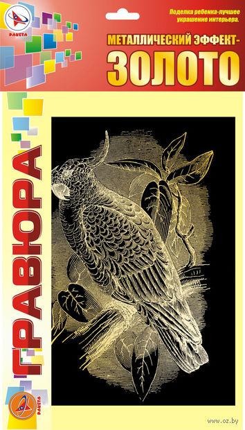 "Гравюра ""Попугай"" (золото) — фото, картинка"