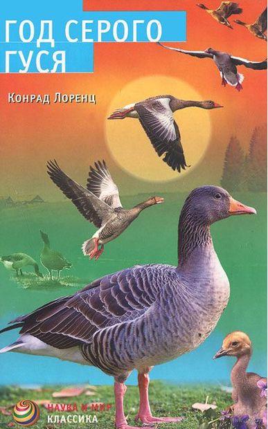 Год серого гуся — фото, картинка