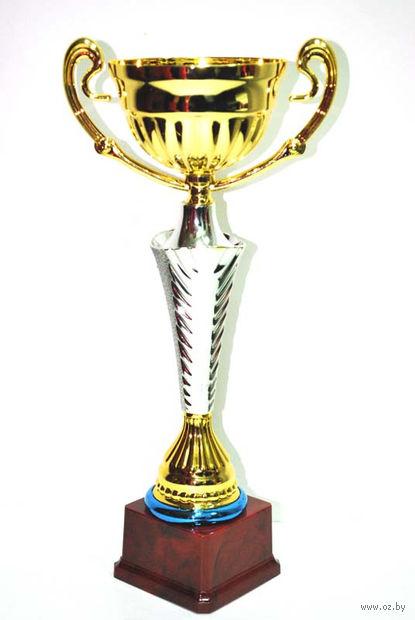 Кубок сувенирный (арт. FB2031-B) — фото, картинка