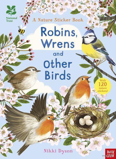 Малиновки, синицы и другие птицы. В гости к природе — фото, картинка