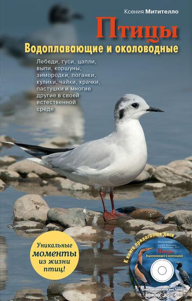 Птицы. Водоплавающие и околоводные (+ CD). Ксения Митителло