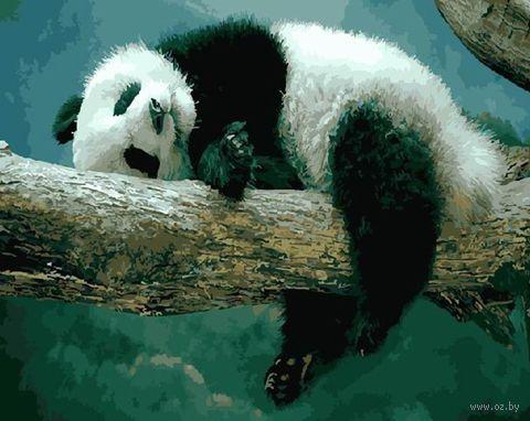 """Картина по номерам """"Сладкие сны панды"""" (400х500 мм) — фото, картинка"""