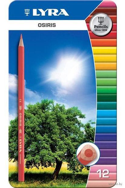 """Набор карандашей цветных """"Osiris"""" (12 цветов)"""