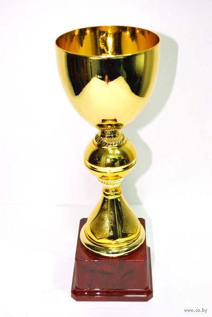 Кубок сувенирный (арт. FB2032-B) — фото, картинка