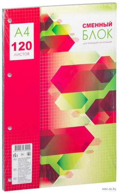 Сменный блок в клетку (А4; 120 листов)