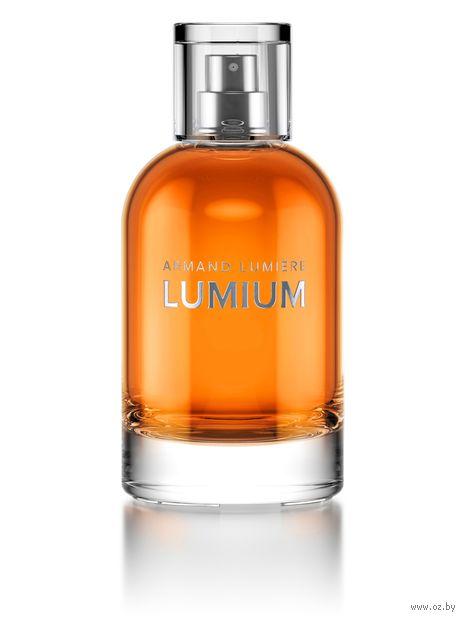 "Парфюмерная вода для мужчин ""Lumium 495"" (100 мл) — фото, картинка"