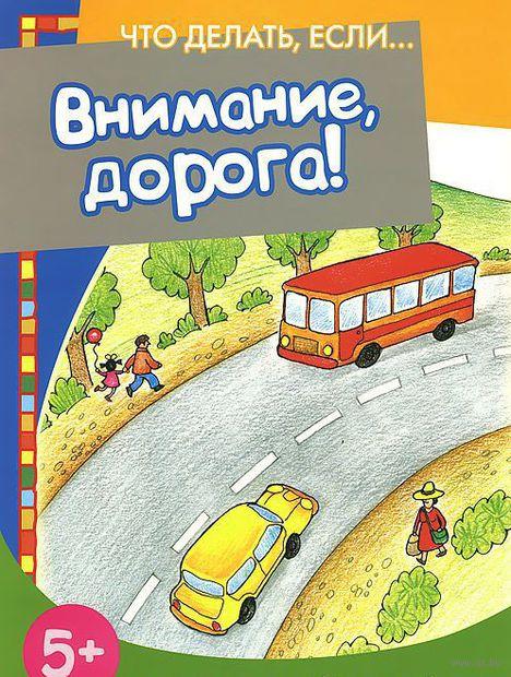 Внимание, дорога!. Н. Евдокимова
