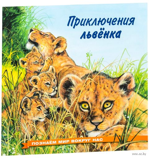 Приключения львенка — фото, картинка