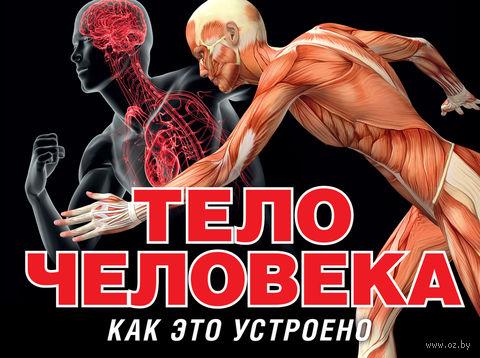 Тело человека. Питер Маврикис