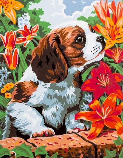 """Картина по номерам """"Чудесный аромат"""" (300х400 мм; арт. PC3040001) — фото, картинка"""