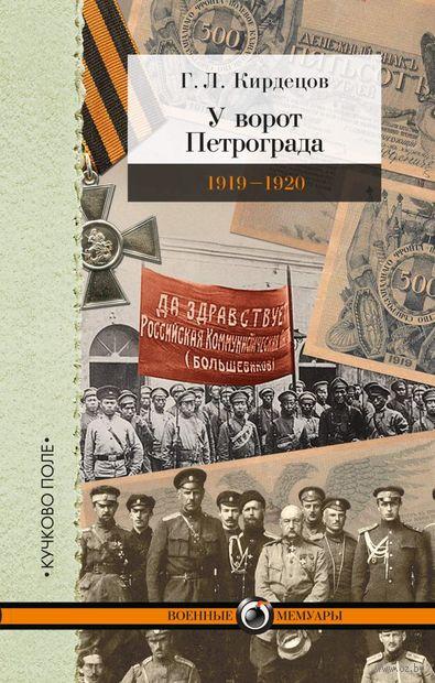У ворот Петрограда 1919-1920 годы — фото, картинка
