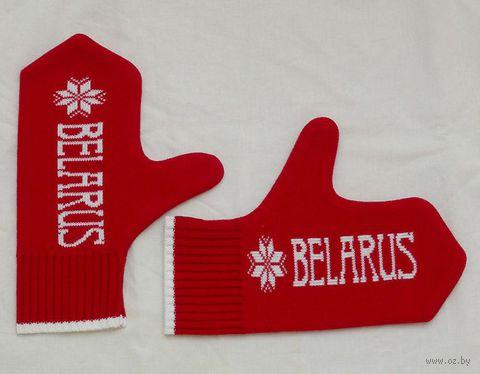 """Варежки Vitaem """"Belarus"""""""