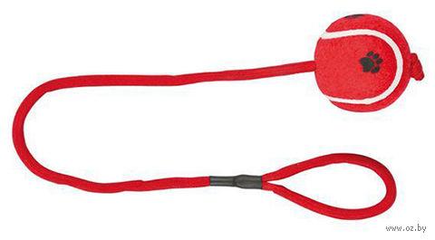 """Игрушка для собак """"Мячик на веревке"""" (50 см) — фото, картинка"""