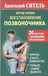 Метод Сителя. Восстановление позвоночника (20 карточек). Анатолий Ситель