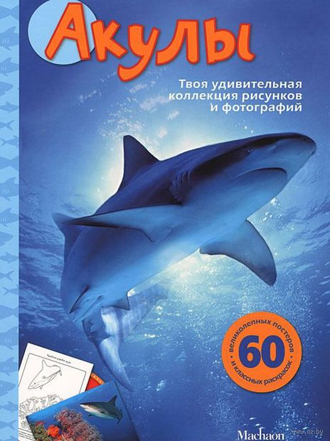 Акулы. Сэл Эмма
