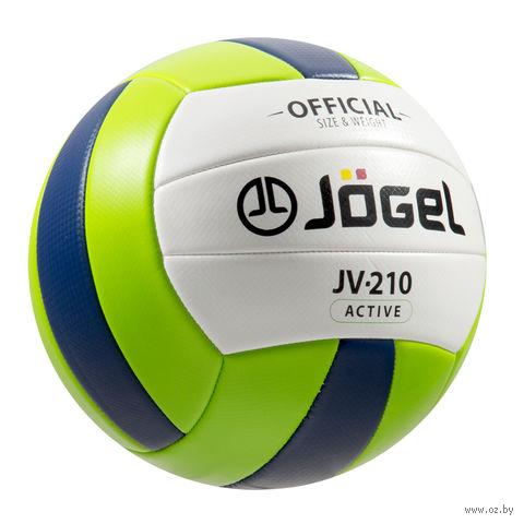 Мяч волейбольный Jogel JV-210 №5 — фото, картинка