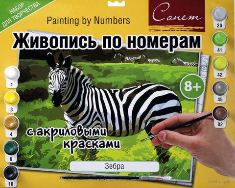 """Картина по номерам """"Зебра"""" (300х420 мм)"""