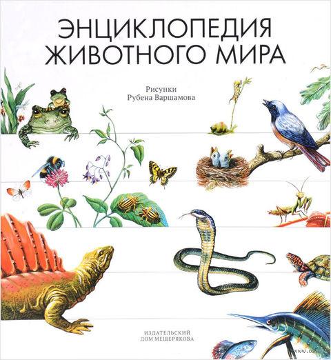 Энциклопедия животного мира — фото, картинка
