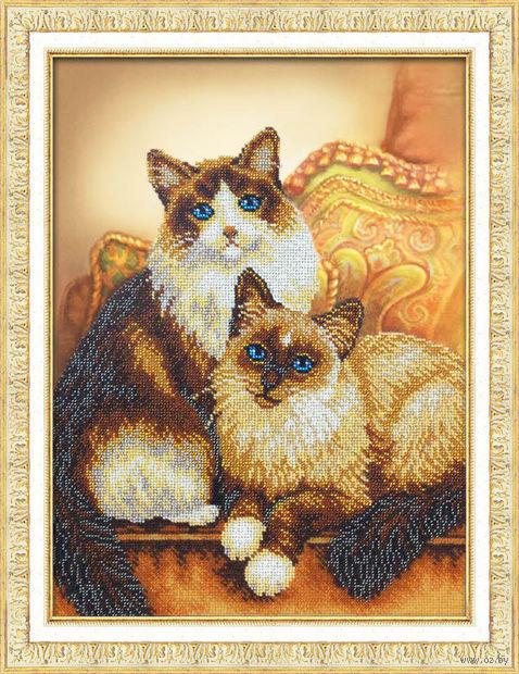 """Вышивка бисером """"Котики"""""""
