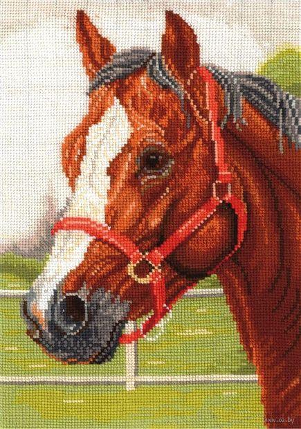 """Вышивка крестом """"Горячий конь"""""""