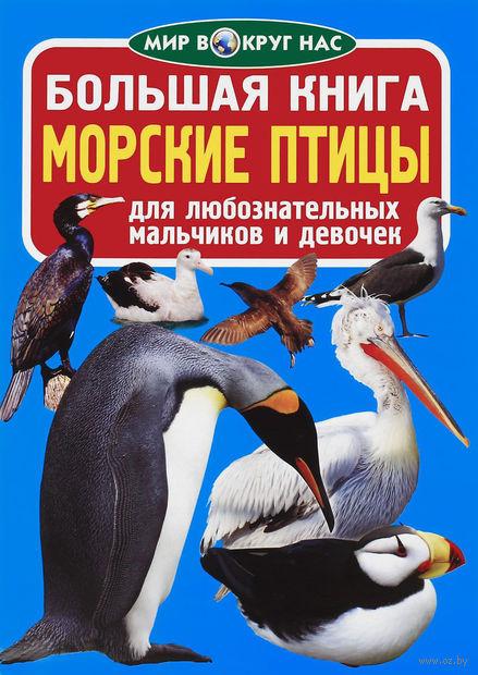 Большая книга. Морские птицы — фото, картинка