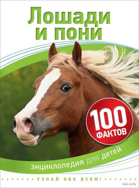 Лошади и пони — фото, картинка