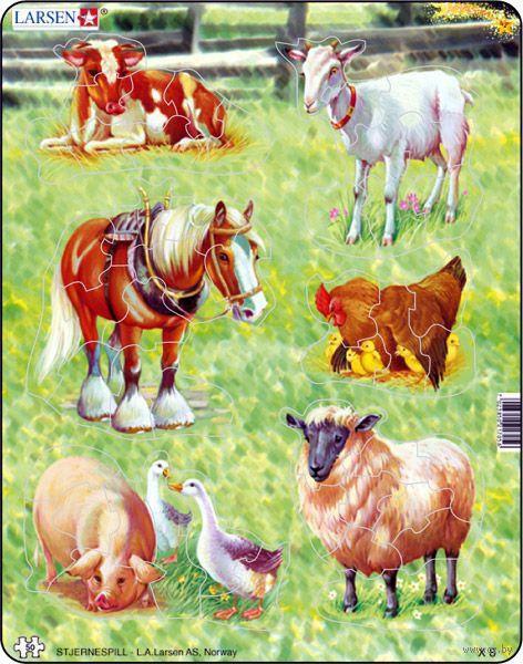 "Пазл-рамка ""Домашние животные"" (34 элемента) — фото, картинка"