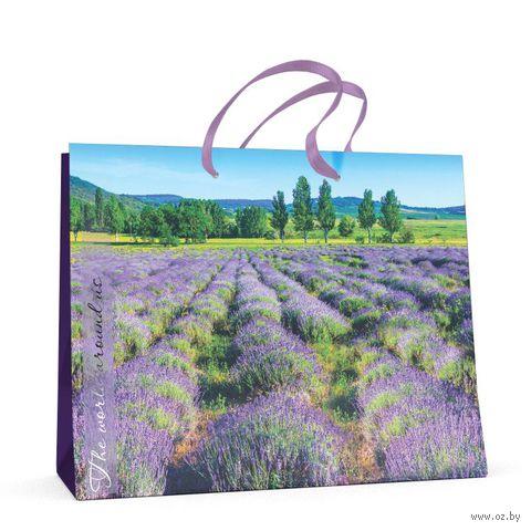 """Пакет бумажный подарочный """"Природа"""" (32,5x26x13 см) — фото, картинка"""