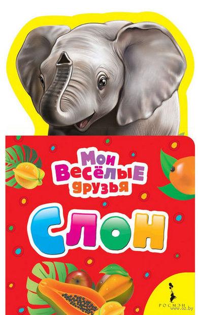 Слон — фото, картинка