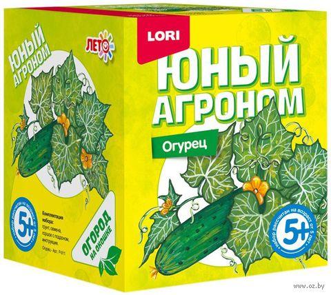 "Набор для выращивания растений ""Огурец"" — фото, картинка"
