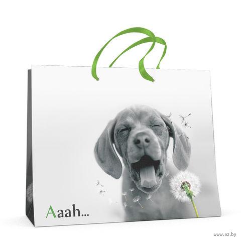 """Пакет бумажный подарочный """"Щенки. Контрасты"""" (32,5x26x13 см) — фото, картинка"""