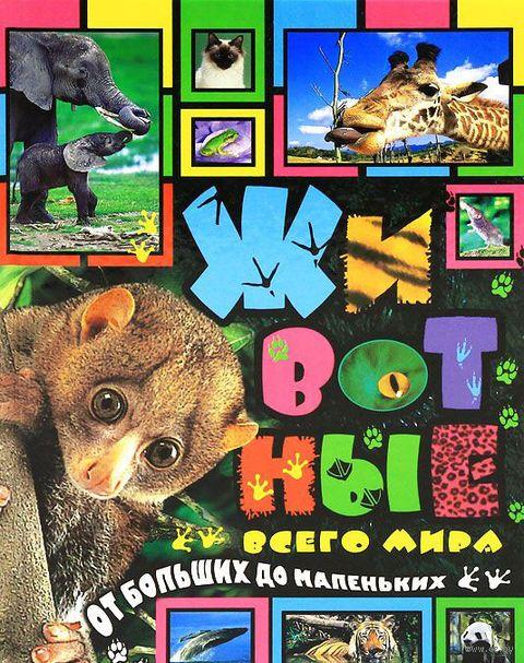 Животные всего мира. От больших до маленьких
