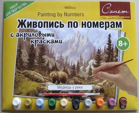 "Картина по номерам ""Медведь у реки"" (300х420 мм) — фото, картинка"