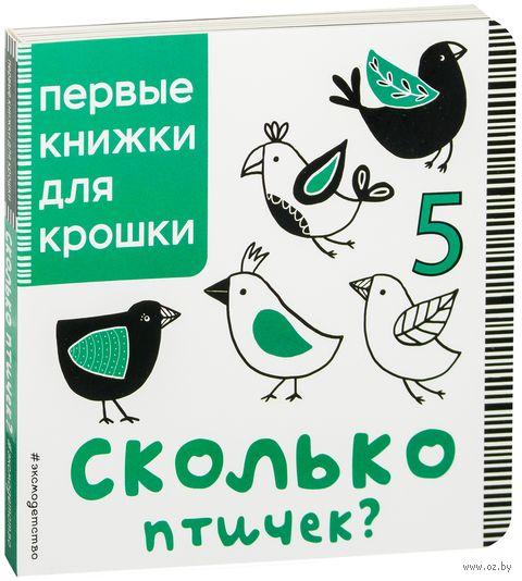 Сколько птичек? — фото, картинка