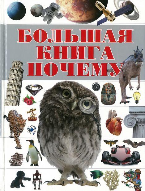 """Большая книга """"Почему"""" — фото, картинка"""