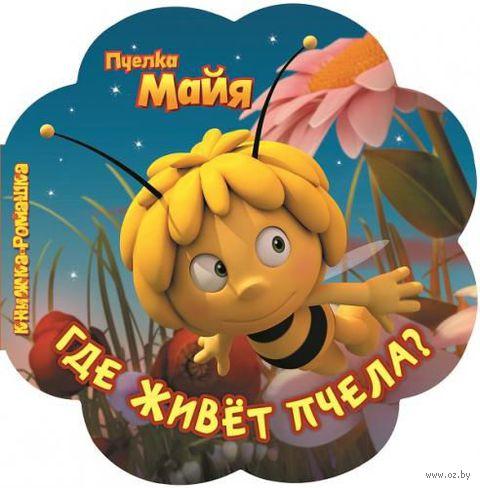 Пчелка Майя. Где живет пчела?