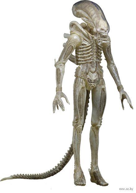 "Фигурка ""Aliens. Predator Translucent Concept"" — фото, картинка"