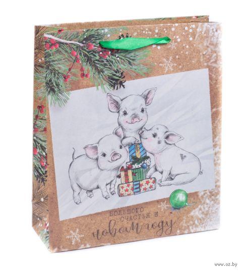 """Пакет бумажный подарочный """"Большого счастья"""" (18х23х8 см) — фото, картинка"""