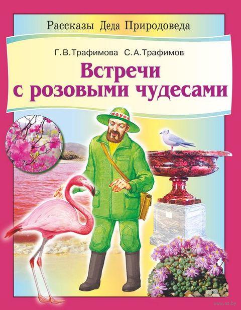 Встречи с розовыми чудесами — фото, картинка