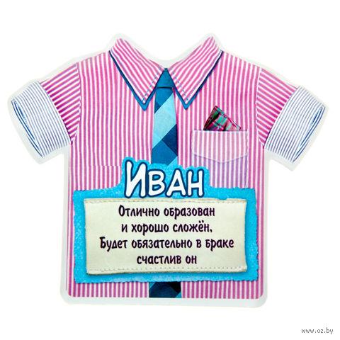 """Магнит пластмассовый """"Иван"""" (11,5х9,9 см)"""