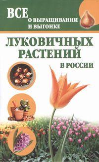 Все о выращивании и выгонке луковичных растений в России. Татьяна Литвинова